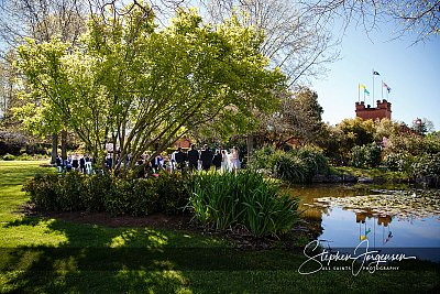 Wedding photograph in the rose garden at All Saints Estate Rutherglen  by Stephen Jorgensen from All Saints Photography Albury.